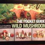 Pocket guide wild mushrooms